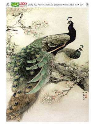 Rich Kendinden Yapışkanlı Pirinç Kağıdı - 29 x 42 cm - 2041
