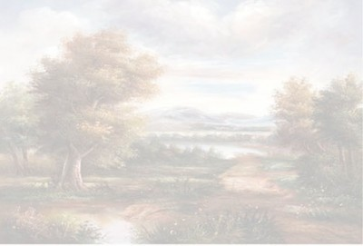 RICH - Rich Kolay Transfer Büyük Boy Koyu Zemin 6000 - 23 x 32 cm