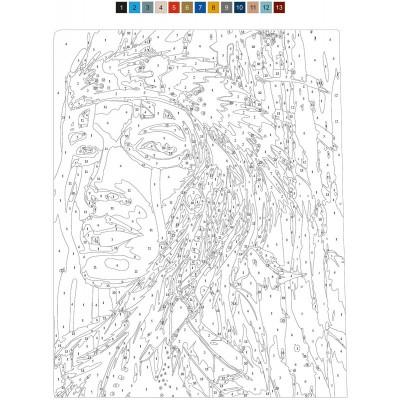 - Sayılarla Tuval Boyama Seti - 40 x 50 cm - Kızıldereli (1)
